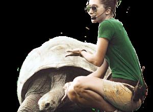 Es_keeper-tartarughe2 copia4
